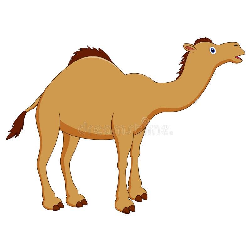 Fumetto sveglio del cammello illustrazione di stock