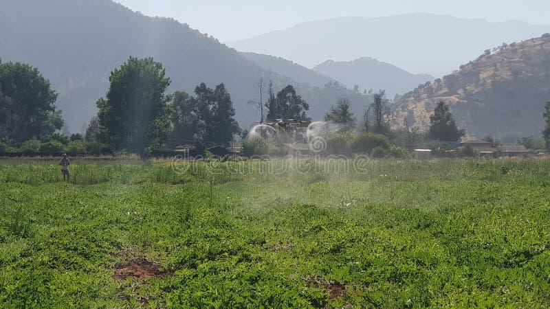 Fumigator del fuco per la marca di tta di agricoltura immagini stock libere da diritti