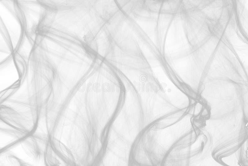 Fumo abstrato dos cigarros em um fundo branco fotografia de stock royalty free