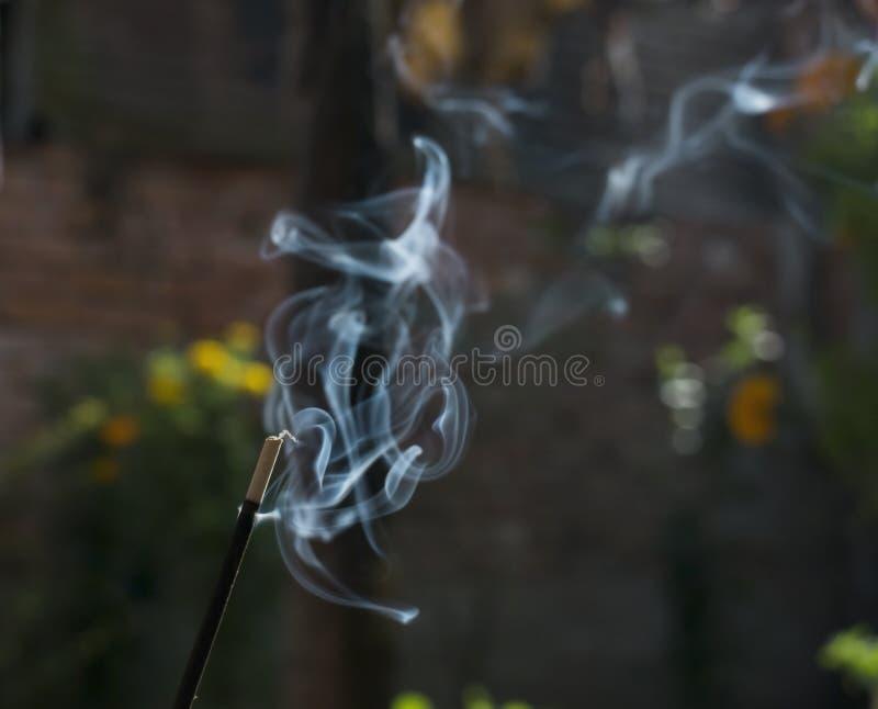 fumo aleatório branco da Joss-vara fotos de stock royalty free