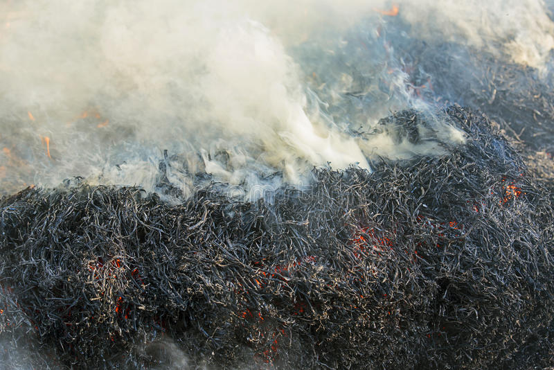 Fumo do fogo imagem de stock royalty free