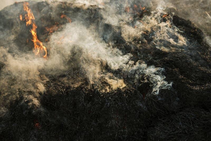 Fumo do fogo fotos de stock royalty free
