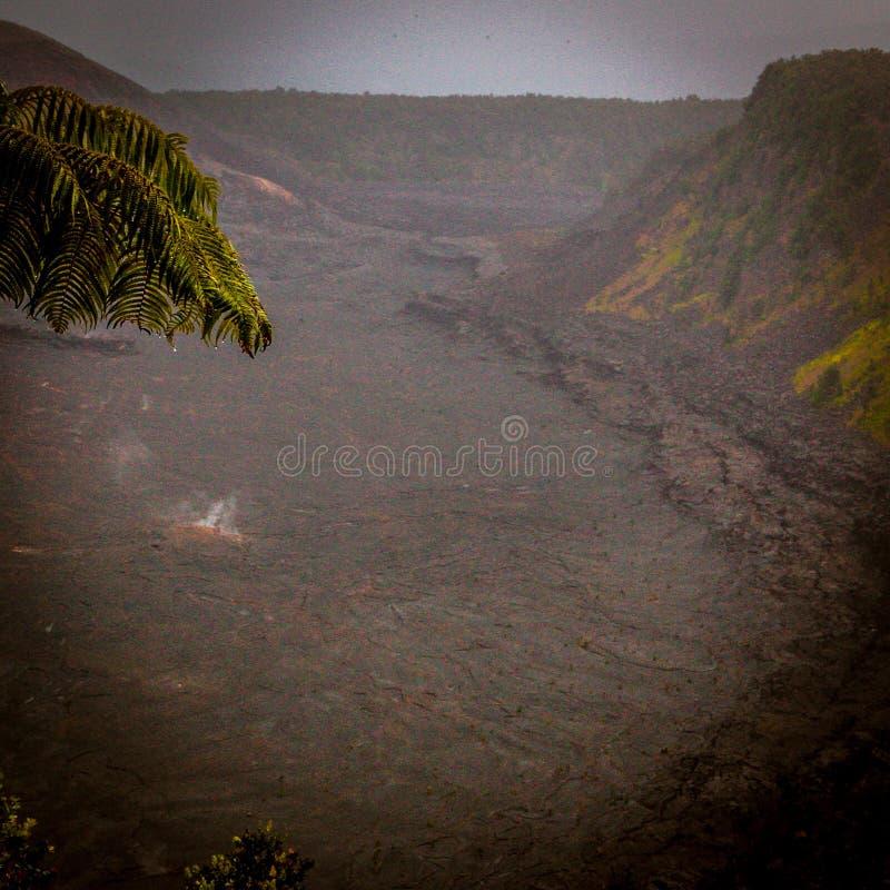 Fumo do fogo do blackvolcano da árvore do vale do córrego da lava fotos de stock