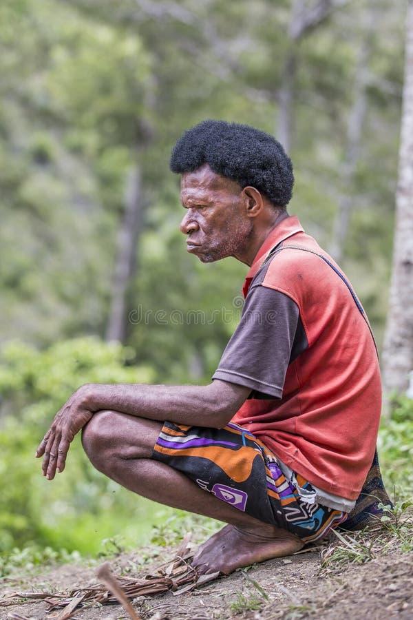 Fumo do homem do tribo de Dani imagens de stock royalty free