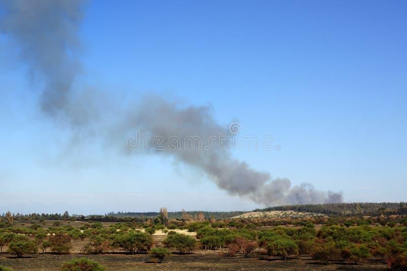 Fumo do incêndio florestal foto de stock