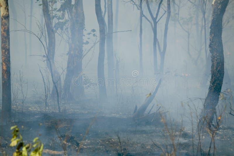 Fumo dopo il fuoco fotografie stock