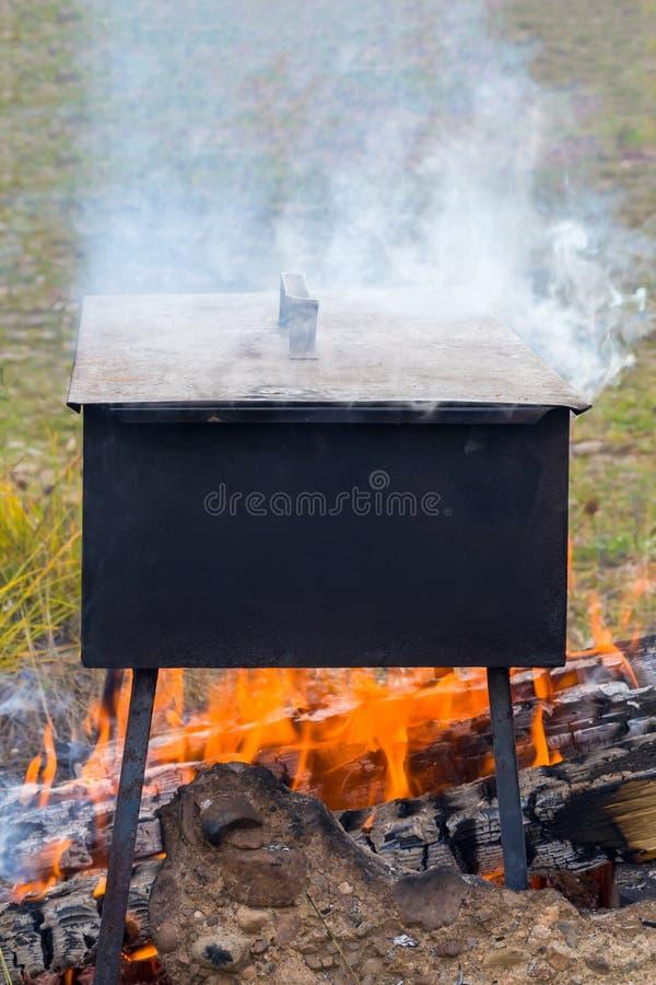 Fumo dos peixes em um fogo foto de stock royalty free