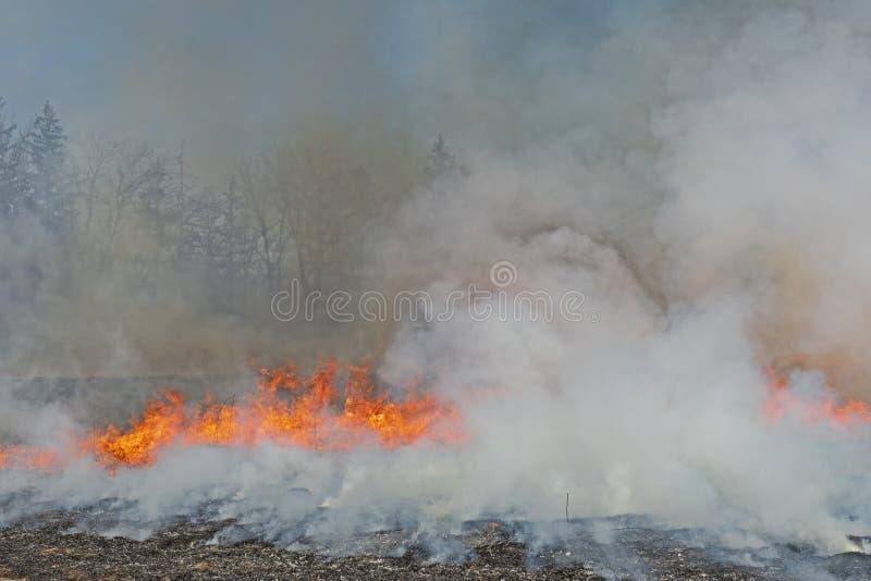 Fumo e fogo e céus escurecidos fotos de stock royalty free