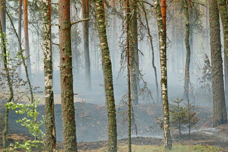 Fumo e fuoco nel legno immagini stock libere da diritti