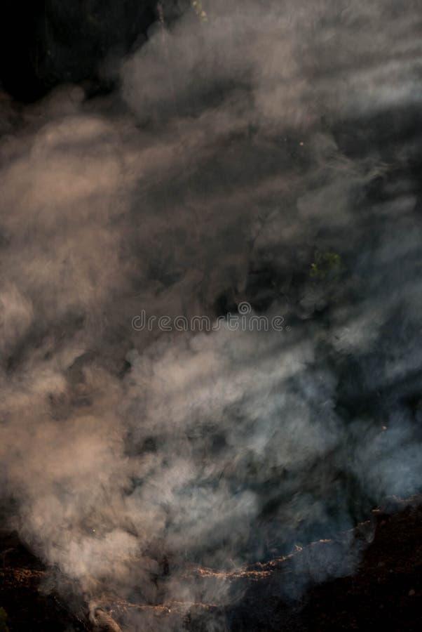Fumo mergulhado fotografia de stock royalty free