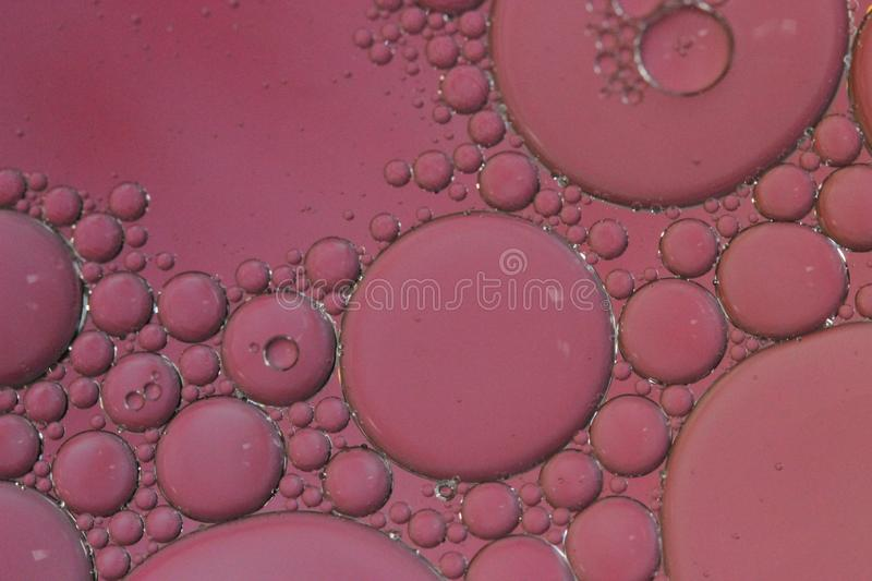 Pink Bubbles Macro Abstract artistic background royalty free stock images