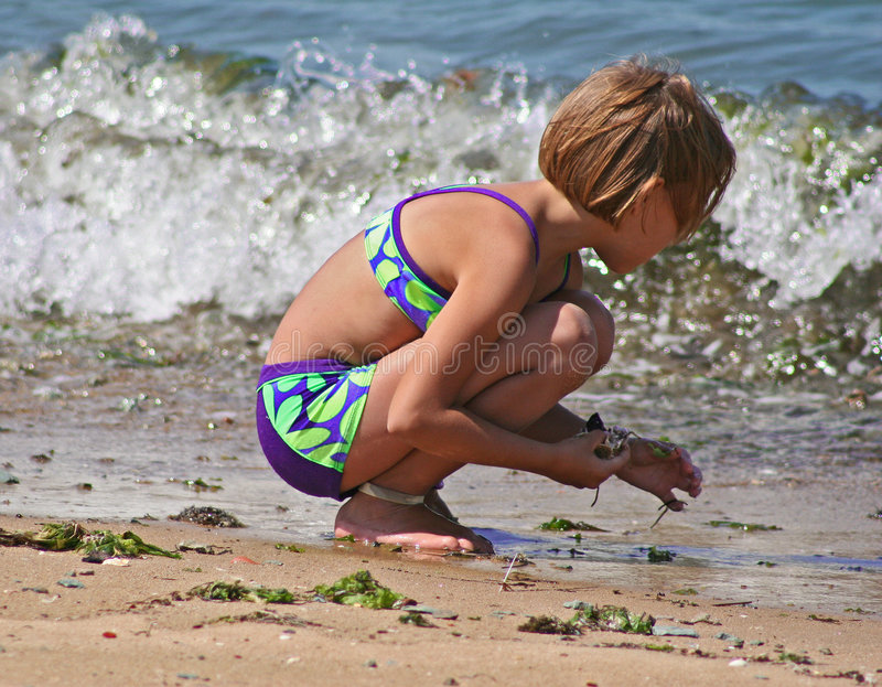 Fun at the beach. Little girl gathering sea shells at the beach in San Diego stock images