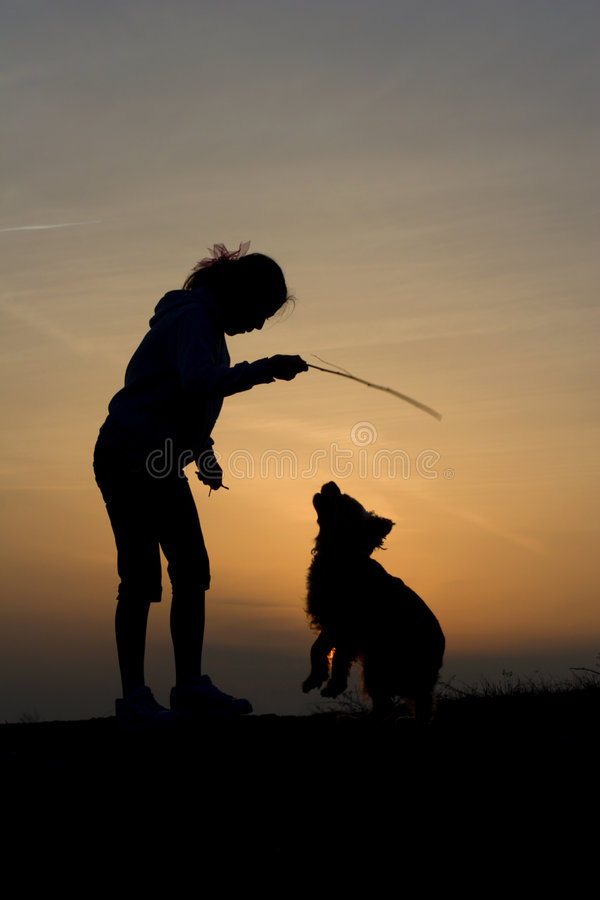 Fun of child and dog in sunset royalty free stock images