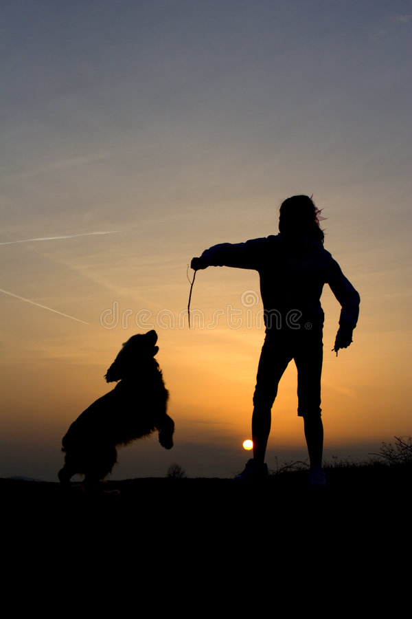 Download Fun Of Childen And Dog In Sunset Stock Photography - Image: 8881422