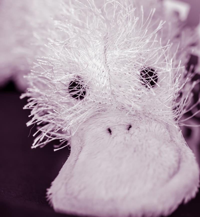 Close-up of Fluffy Stuffed Toy with Round Eyes and Big Beak stock photos