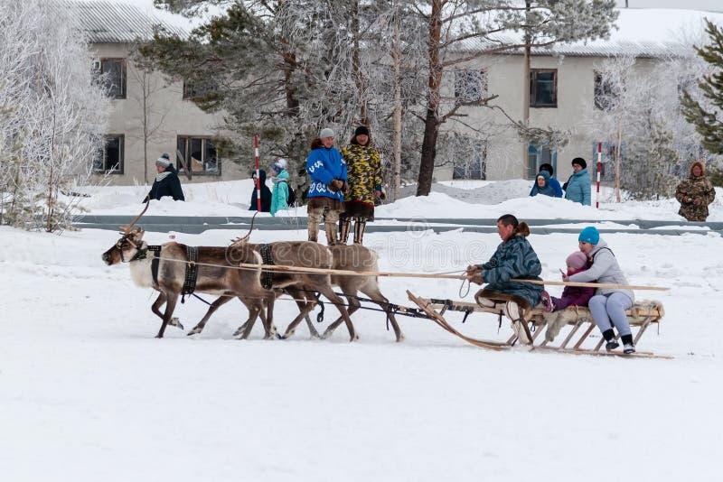 Fun riding on a reindeer sleigh royalty free stock photos