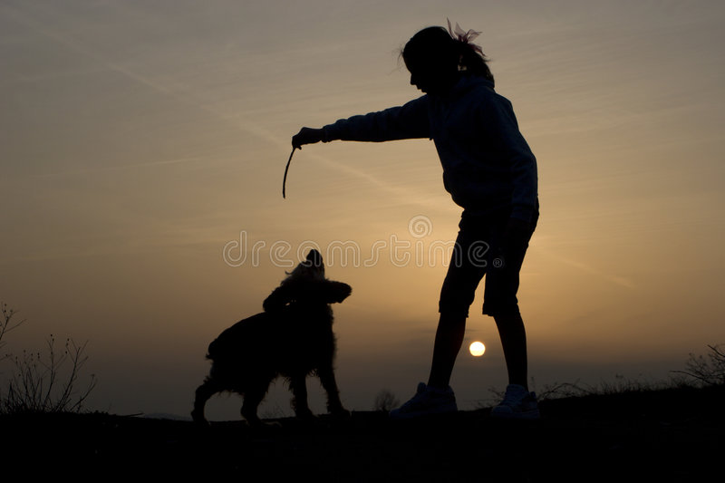 Fun of woman and dog in sunset stock photo