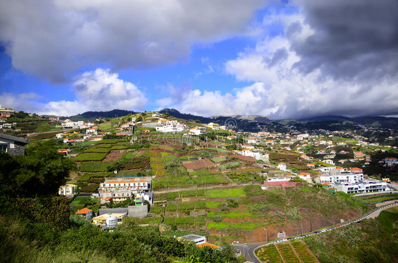Funchal Madeira. Cultivated plots of land and homes in Funchal Madeira stock photos