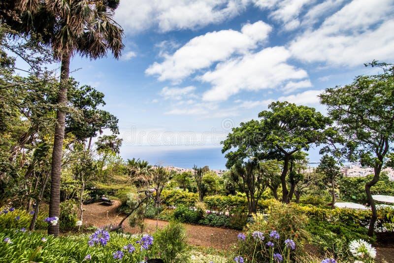 Funchal, Madeira - julio de 2018 El jardín botánico famoso en Funchal, isla de Madeira, Portugal imagenes de archivo