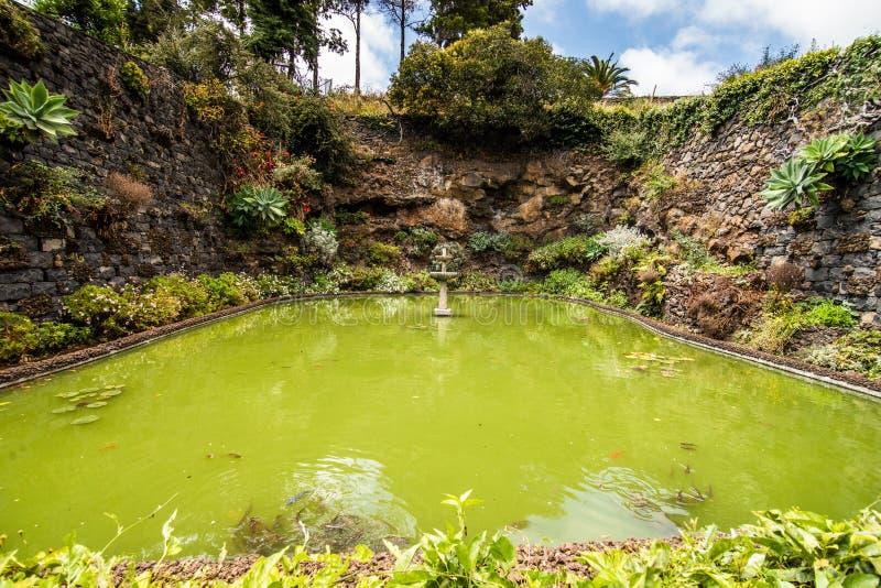 Funchal, Madeira - julio de 2018 El jardín botánico famoso en Funchal, isla de Madeira, Portugal fotos de archivo