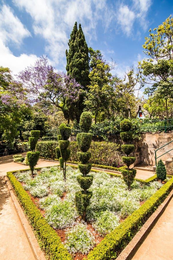 Funchal, Madeira - julio de 2018 Parque verde decorativo - jardín botánico Funchal, Madeira fotografía de archivo