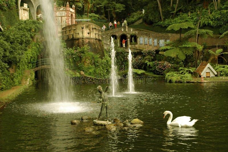 funchal park Madeira widok obrazy stock