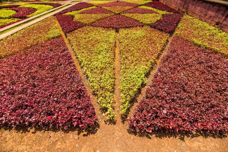 Funchal, Portugal - julio de 2018 Jardín botánico Monte, Funchal, Madeira, Portugal imagenes de archivo