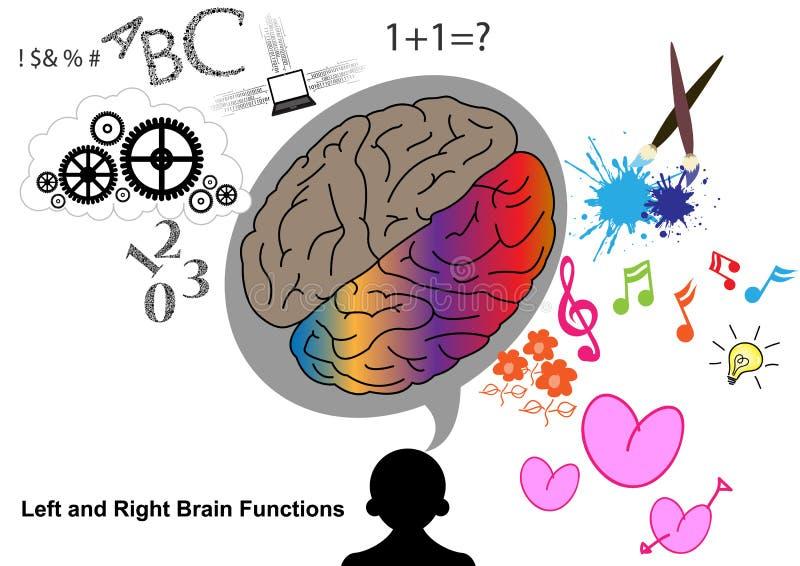 Función izquierda y derecha del cerebro ilustración del vector