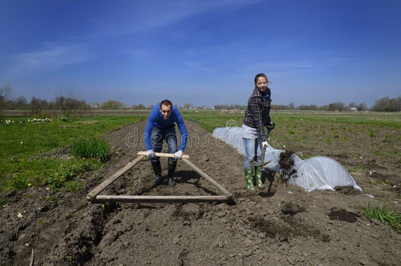 Funcionamento duro do homem novo e da mulher na exploração agrícola letão fotos de stock royalty free