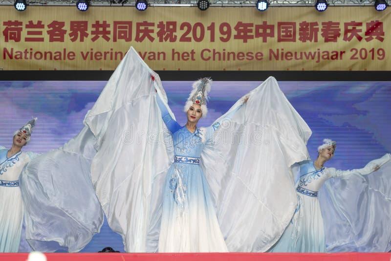 Funcionamiento de baile chino del Año Nuevo 2019 fotografía de archivo