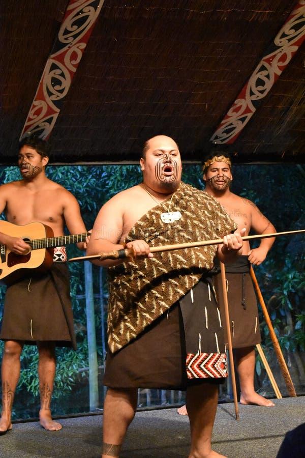 Funcionamiento de la demostración de Maori Cultural de los hombres imagenes de archivo