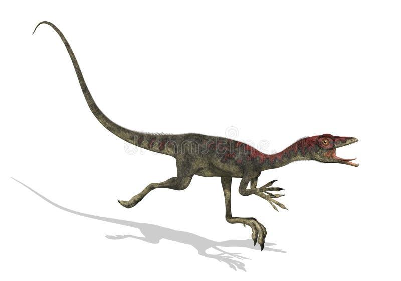 Funcionamiento del dinosaurio de Compsognathus ilustración del vector