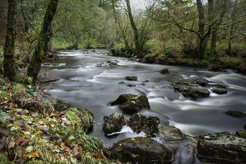 Funcionamiento del río salvaje fotografía de archivo libre de regalías