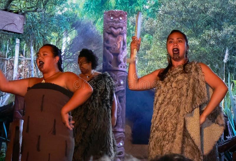 Funcionamiento maorí, Rotorua, Nueva Zelanda fotografía de archivo libre de regalías