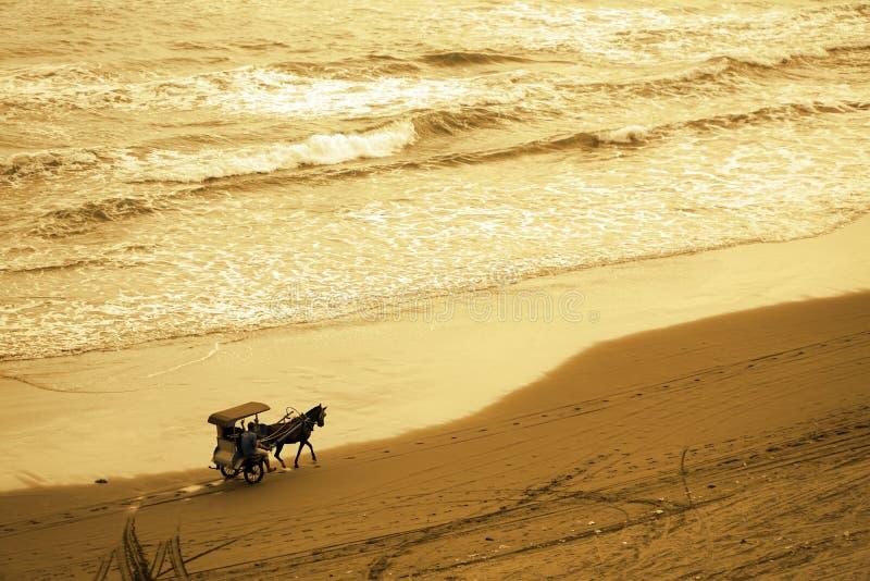 Funcionamientos traídos por caballo del carro a lo largo de la opinión aérea de la orilla imágenes de archivo libres de regalías