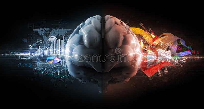 Funciones izquierdas y derechas del cerebro ilustración del vector