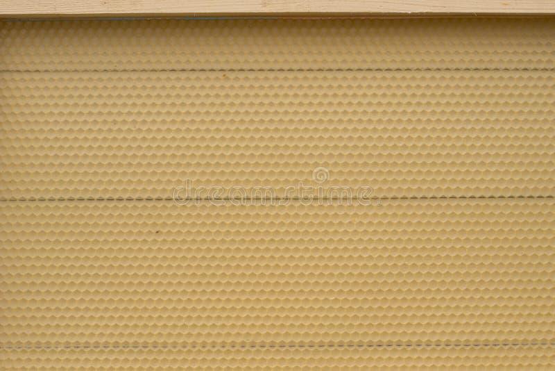 Fundación para los panales constructivos Cierre del peine de la miel para arriba imagenes de archivo