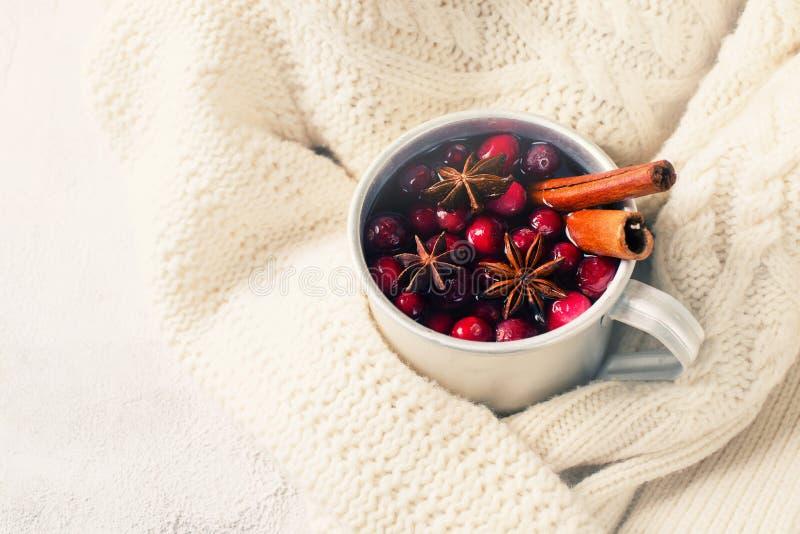 Funderat vin i kopp med tranbäret och kryddor arkivfoton