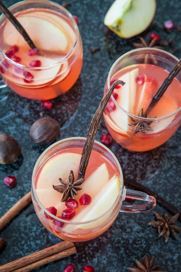 Funderat vin med vinterkryddor fotografering för bildbyråer