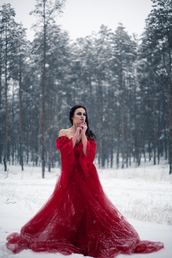 Fundersam flicka i en röd klänning i snöig skog arkivbild