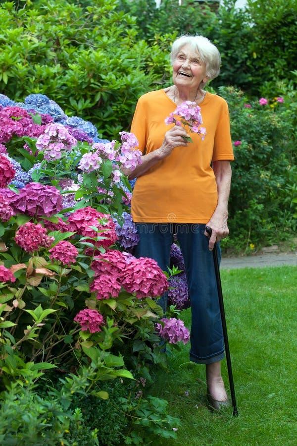 Fundersam gammal kvinna på trädgårds- innehavblommor arkivfoto
