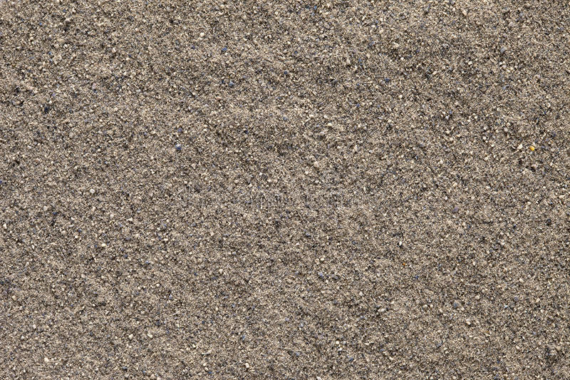 Fundo à terra da pimenta preta (nigrum do gaiteiro). fotografia de stock