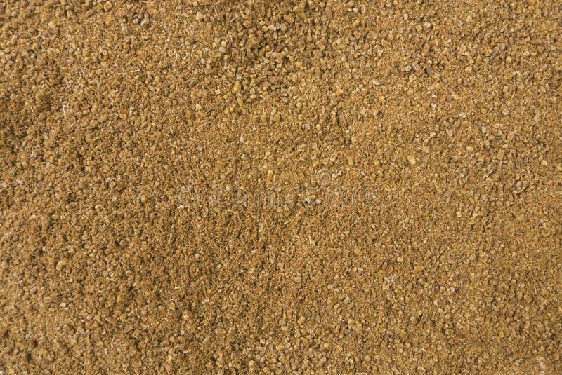 Fundo à terra ou moído da alcaravia Textura de tempero natural Especiarias e ingredientes de alimento naturais imagens de stock