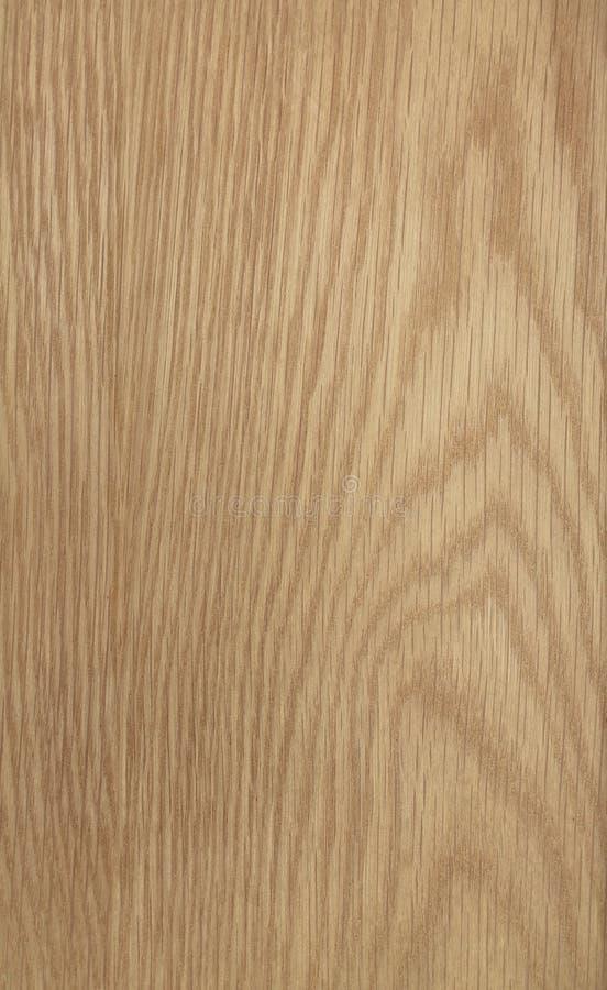 Fundo abstrato da grão da madeira de carvalho imagem de stock