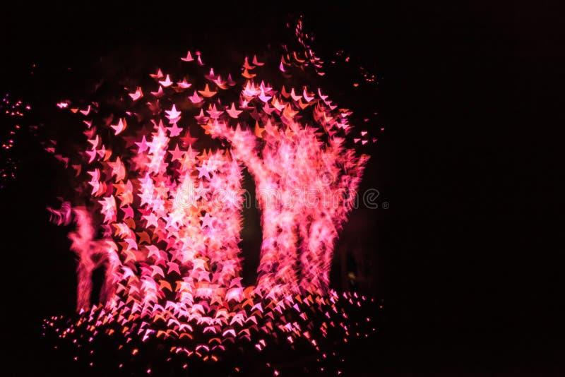 Fundo abstrato da iluminação da luz do bokeh da estrela nas árvores na noite Árvore do conceito das estrelas imagem de stock royalty free