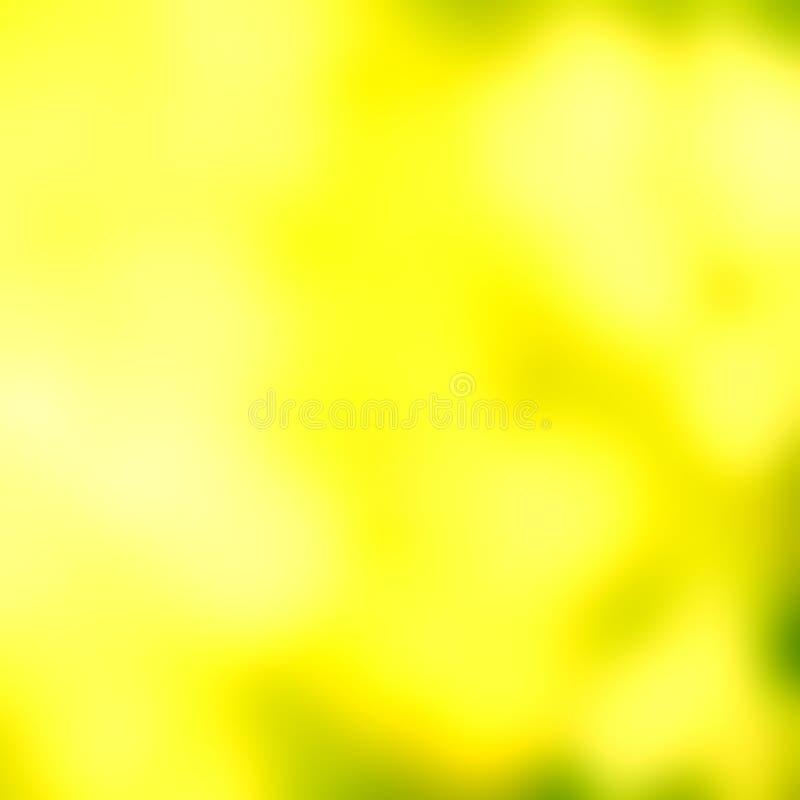 Fundo abstrato da luz suave CCB verde da luz do sumário do bokeh foto de stock