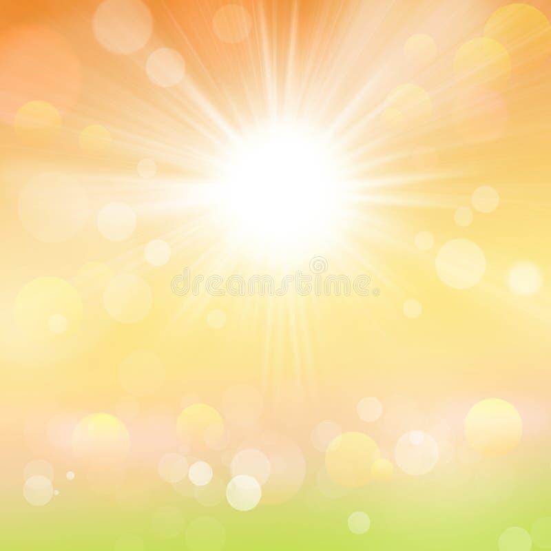 Fundo abstrato da mola e da natureza de Sun do verão foto de stock