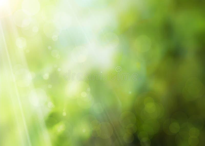 Fundo abstrato da natureza da mola fotos de stock