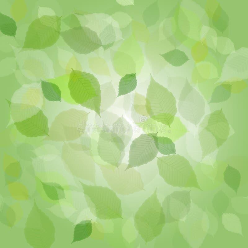 Fundo abstrato das folhas ilustração stock