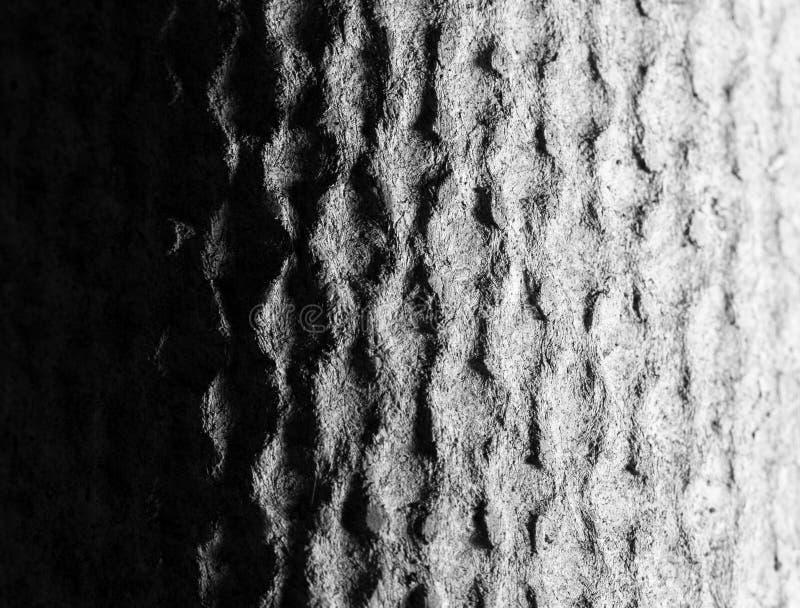 fundo abstrato de um muro de cimento Luz e sombra ilustração royalty free